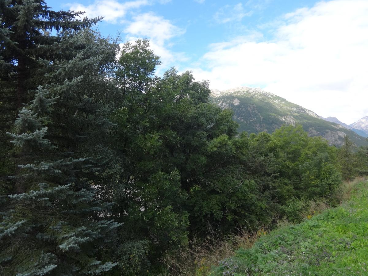 Terrain - La Salle-les-Alpes